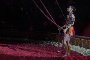 Navidades Circo Price